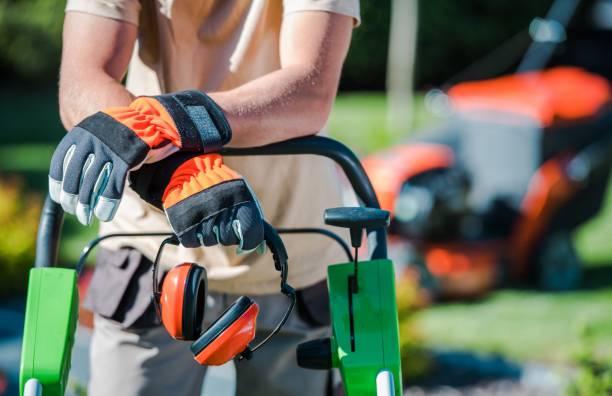 Фото Как найти проверенного мастера по ремонту садово-парковой техники?