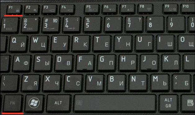 Фото Устройство работает, но экран ноутбука не включается. Необходимо настроить яркость и контрастность монитора