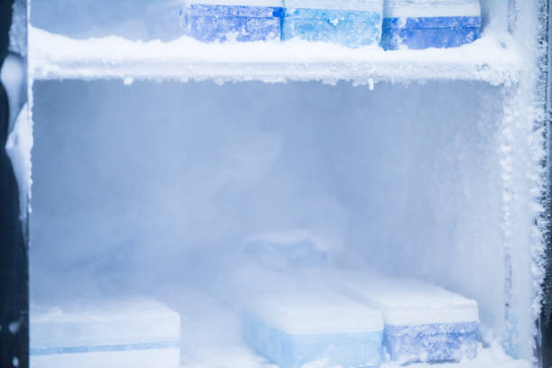 Фото Почему намерзает задняя стенка холодильника
